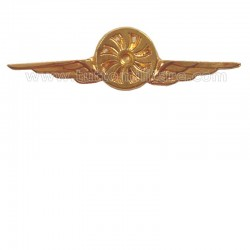 Distintivo Categoria Fotografo Aeronautica