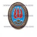 Distintivo Volontari Servizio Permanente VSP
