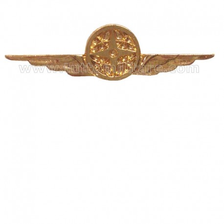 Distintivo Categoria Supporto Logistico Aeronautica