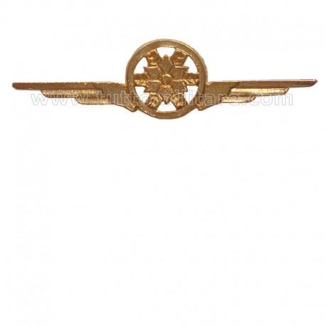 Distintivo Categoria Fisica Aeronautica Militare