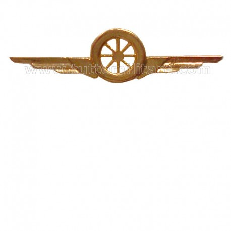 Distintivo Categoria Motorizzazione AM