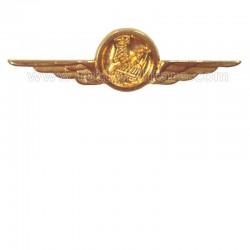 Distintivo Categoria Infrastrutture Aeronautica