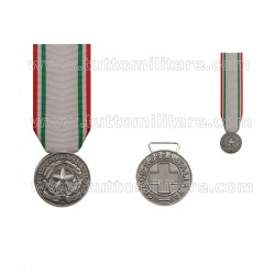 Medaglia al Merito CRI Argento