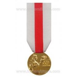 Medaglia Benemerenza Prima Classe Croce Rossa