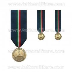 Medaglia Protezione Civile Terza Classe Prima Fascia