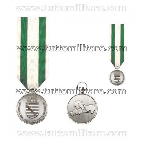 Medaglia Alluvione Sassonia 2013