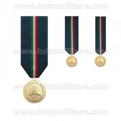 Medaglia d'Oro Protezione Civile I Livello