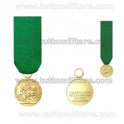Medaglia Mauriziana Fine